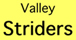 valley striders